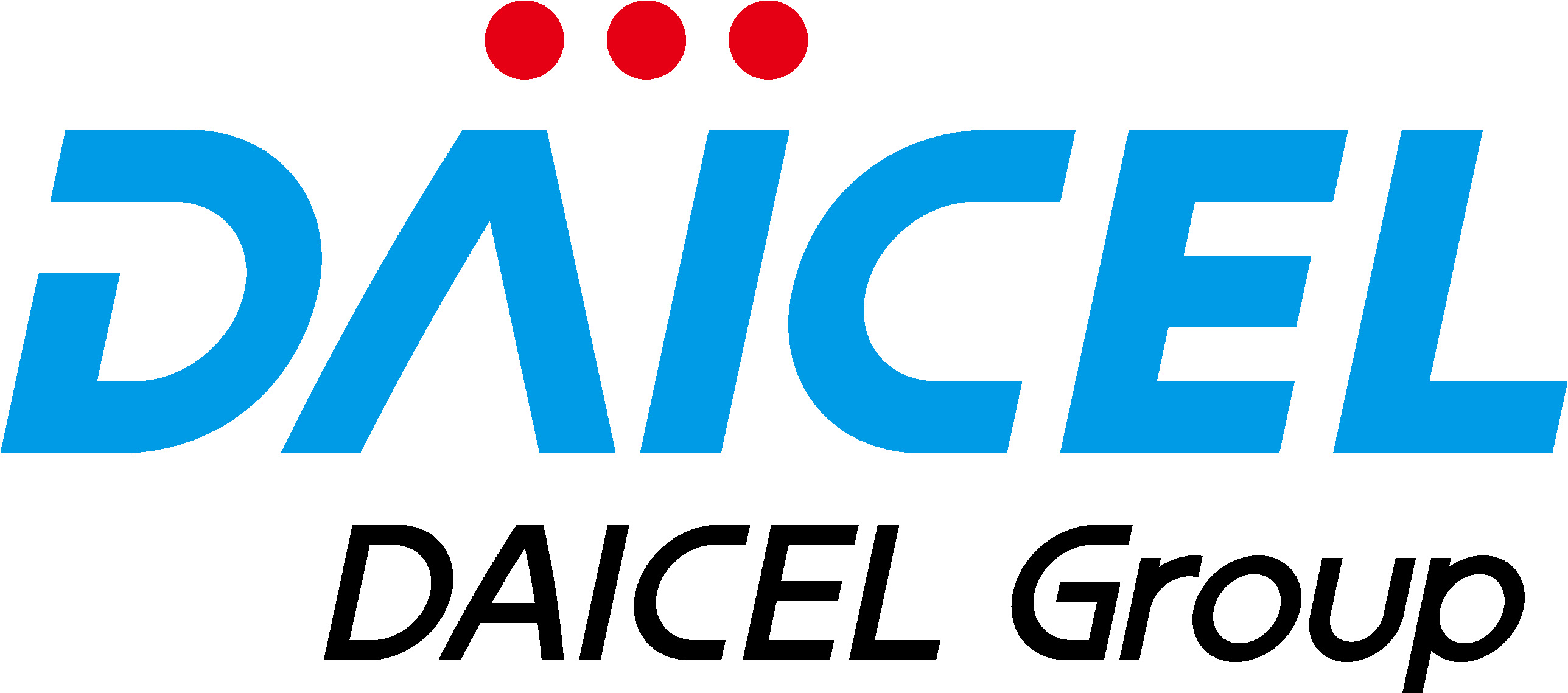 DAICEL GROUP